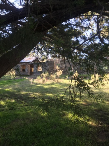 Specimen Gully Shepherds Hut