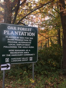 Planted in 1900 for tan bark production to provide alternative local employment following the gold rush.