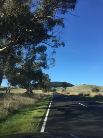 Approaching Mt Franklin from Franklinford