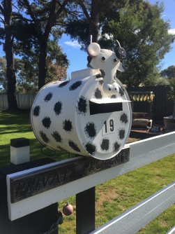 Pack the thermos and put together a picnic basket. Head out and spot some interesting mailboxes. You might even leave a piece of found art for the owners to find and know that you have called by.