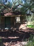 Moliagul abandoned home