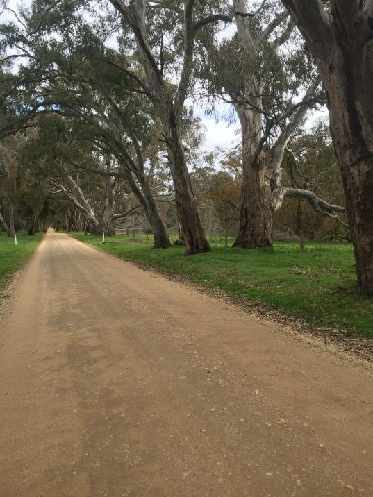 Sandy Creek Road
