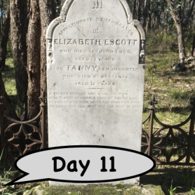 Become a cemetery explorer and create headstone storyboards
