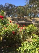 Elphinstone Cemetery