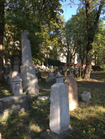 Jewish Cemetery Zizkov